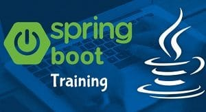 Spring Boot Training Dallas