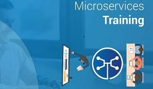 Microservices Training Chicago