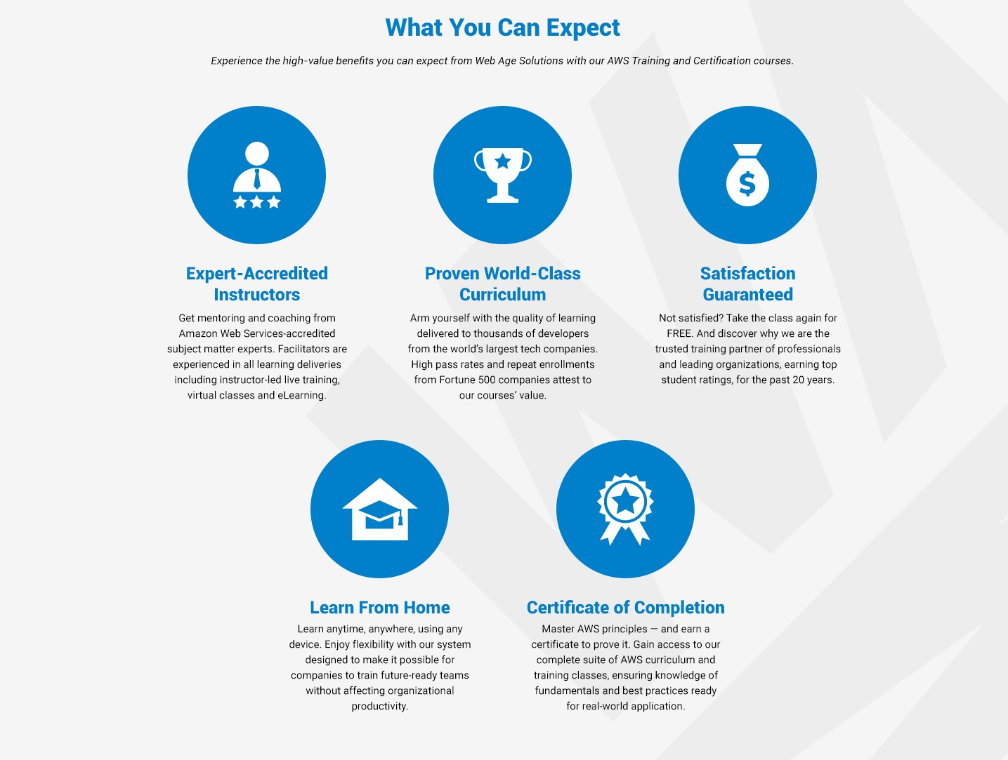 what you can expect with Web Age Solutions