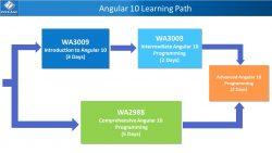 Angular 10 Training path